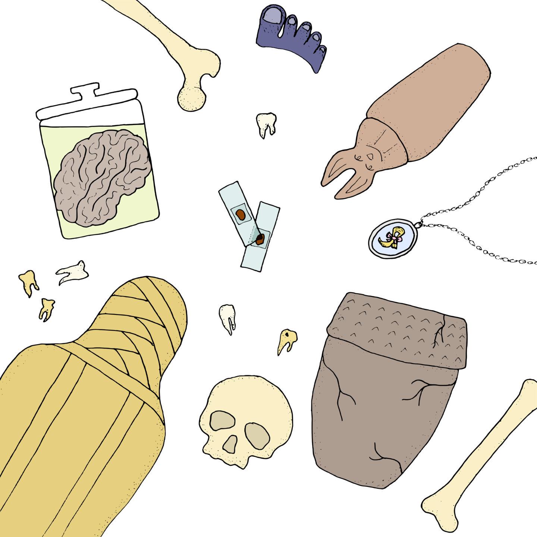 S01E02: Human Remains