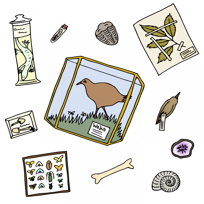 S04E05: Natural History